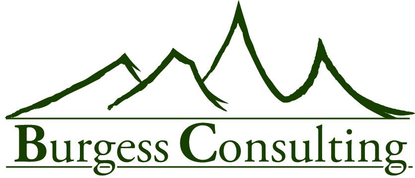Burgess Consulting Logo.jpg