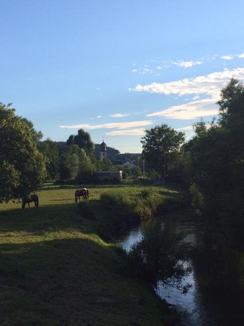 Luxembourg horses