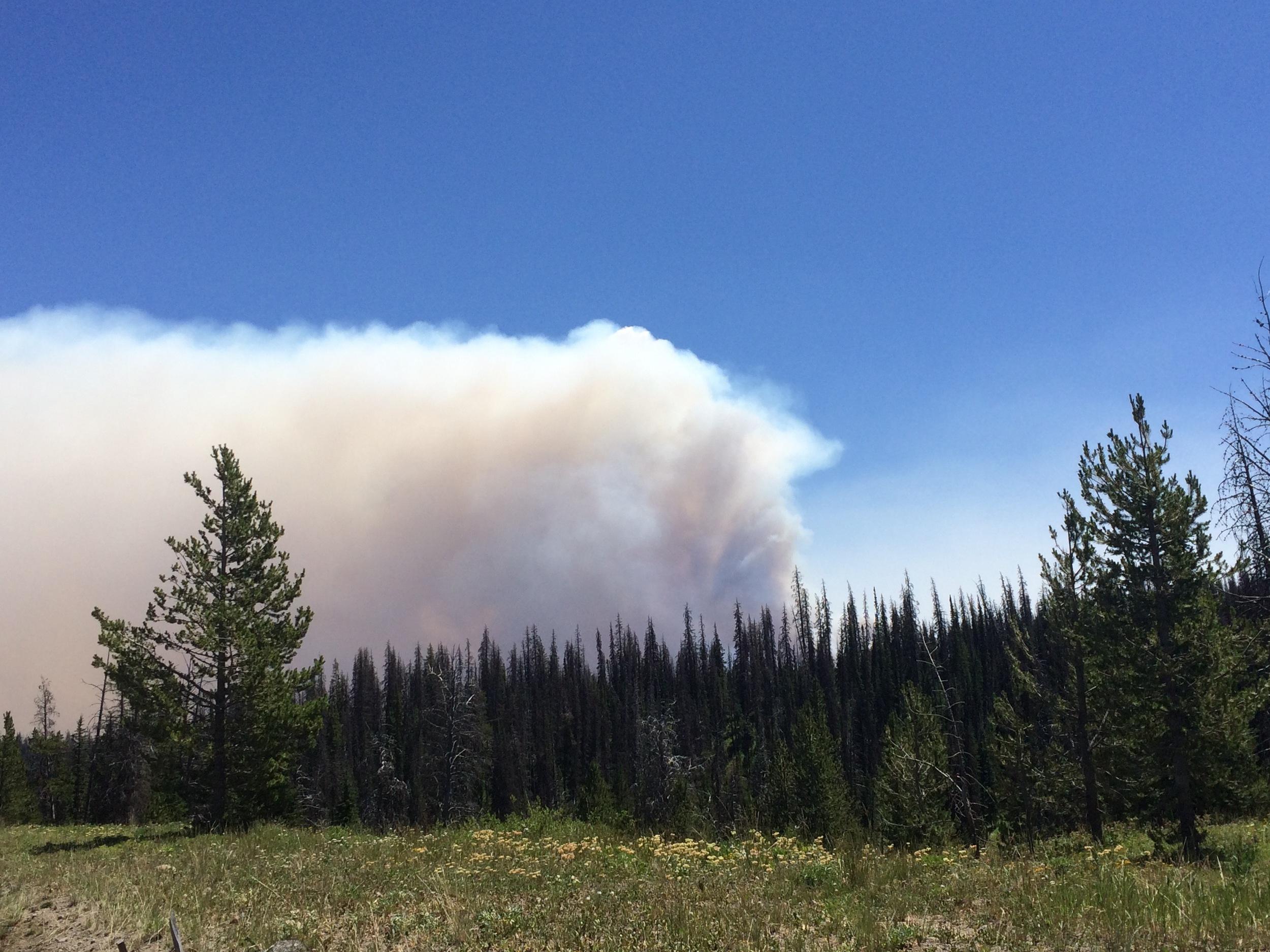 Wyoming Wildfire