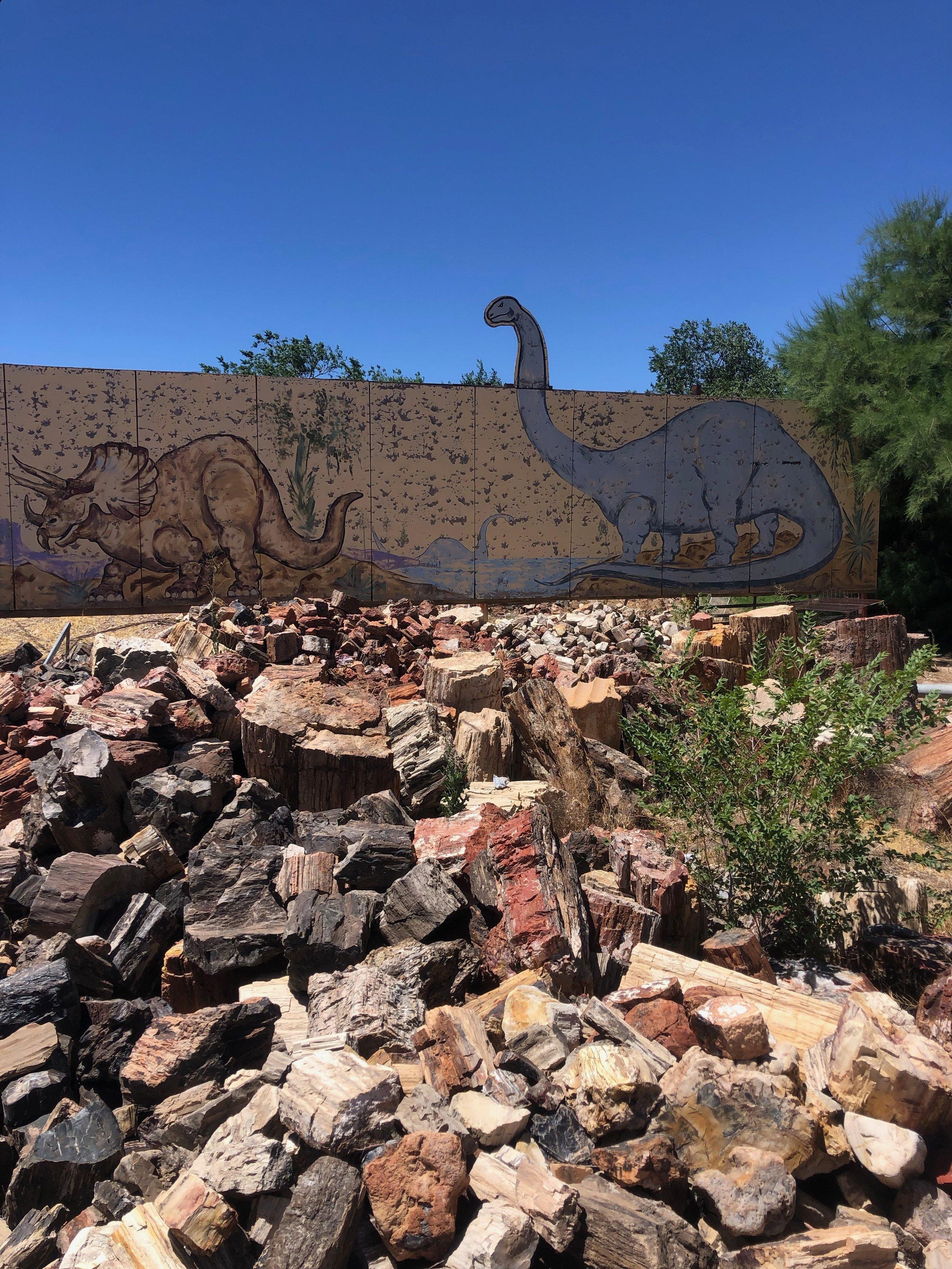 Arizona Dinosaurs