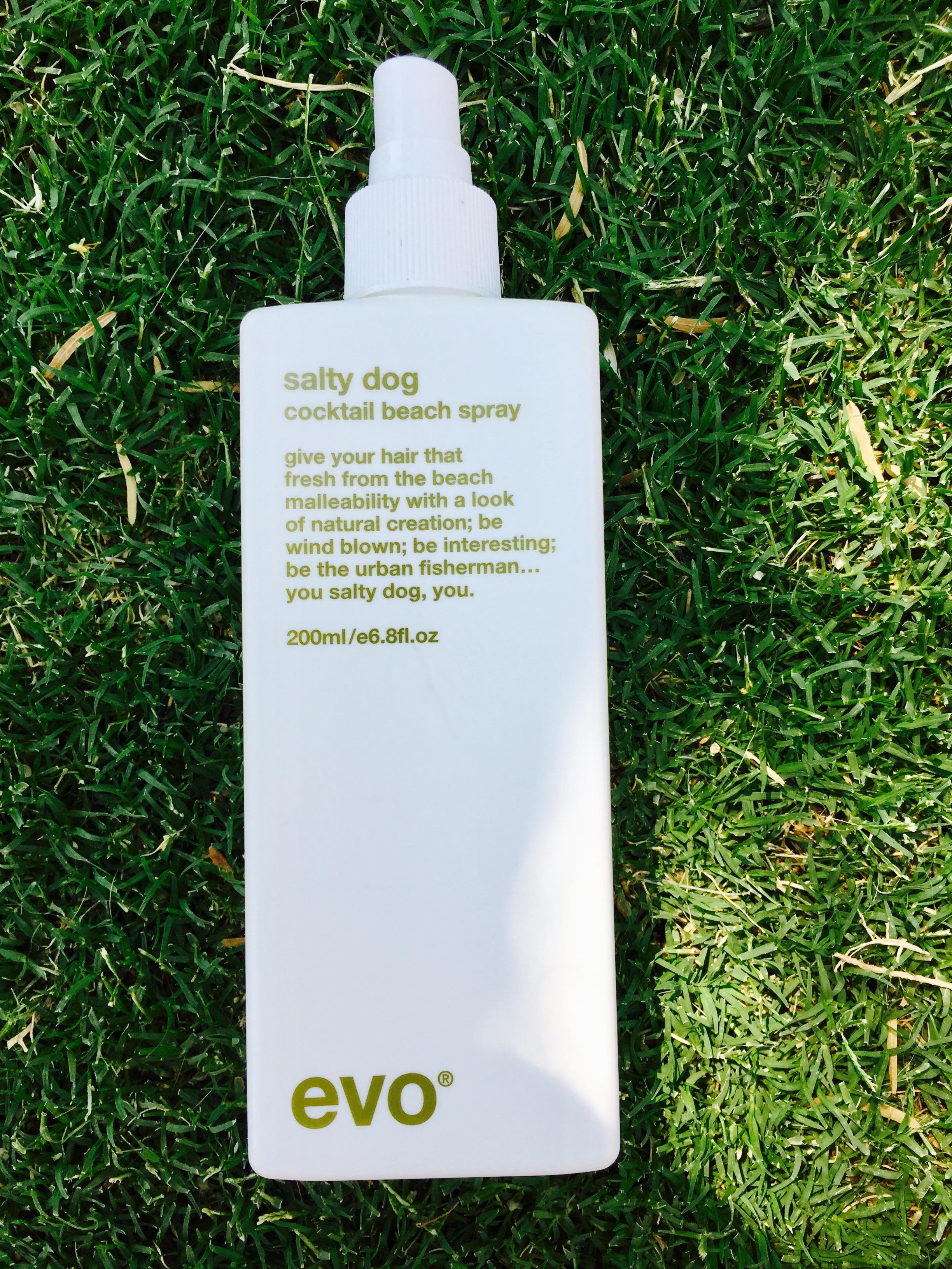 EVO Salty Dog Revitalizing Hair Spray