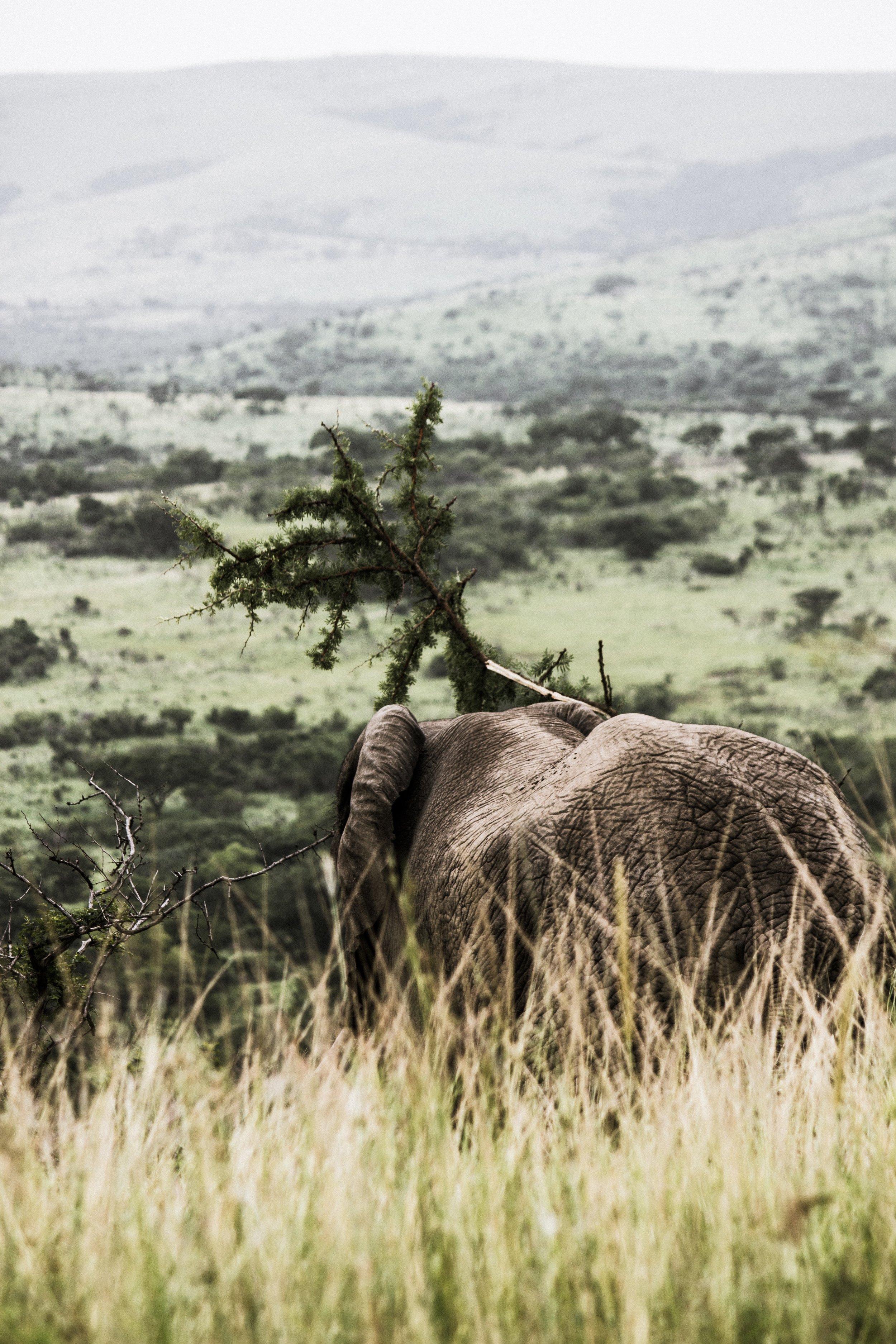 BOTSWANA - OCTOBER