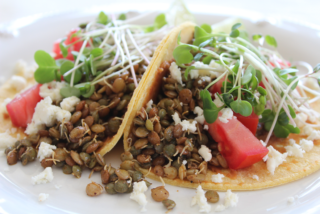 If you're trying to eat less red meat and more plants, but still get enough protein, then lentils are a must-have staple in your kitchen! Simply marinate the sprouted lentils like you would taco meat, and top with diced tomatoes and radish microgreens, an elegant and fresh twist to the classic taco toppings of salsa and thinly sliced radishes.