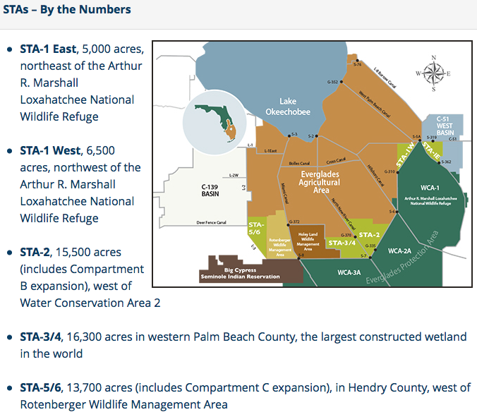 Read the South Florida Water Management District's Water Quality Improvement page/STA report