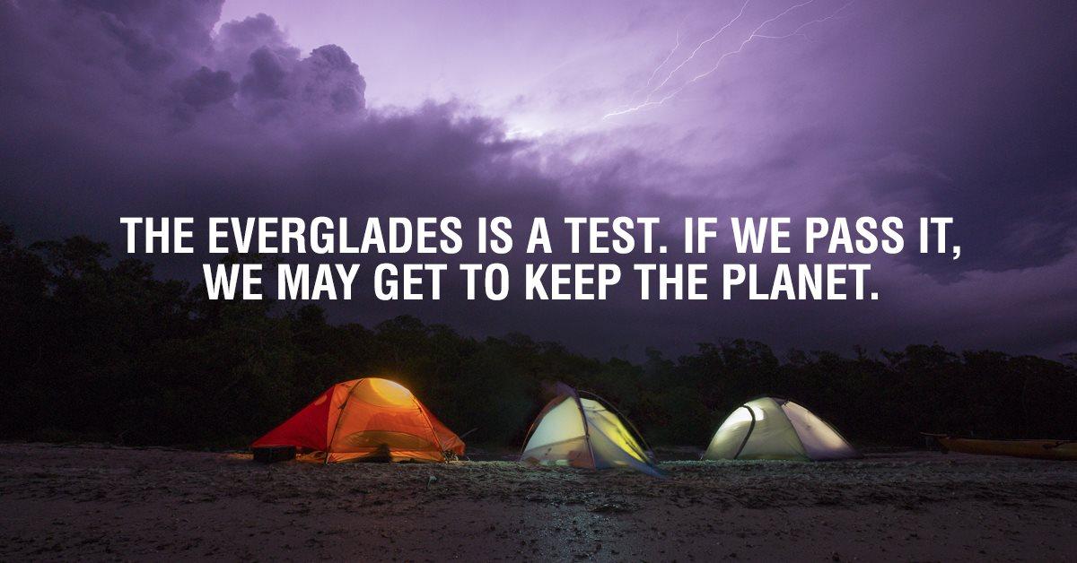 NON Everglades Graphic.jpg