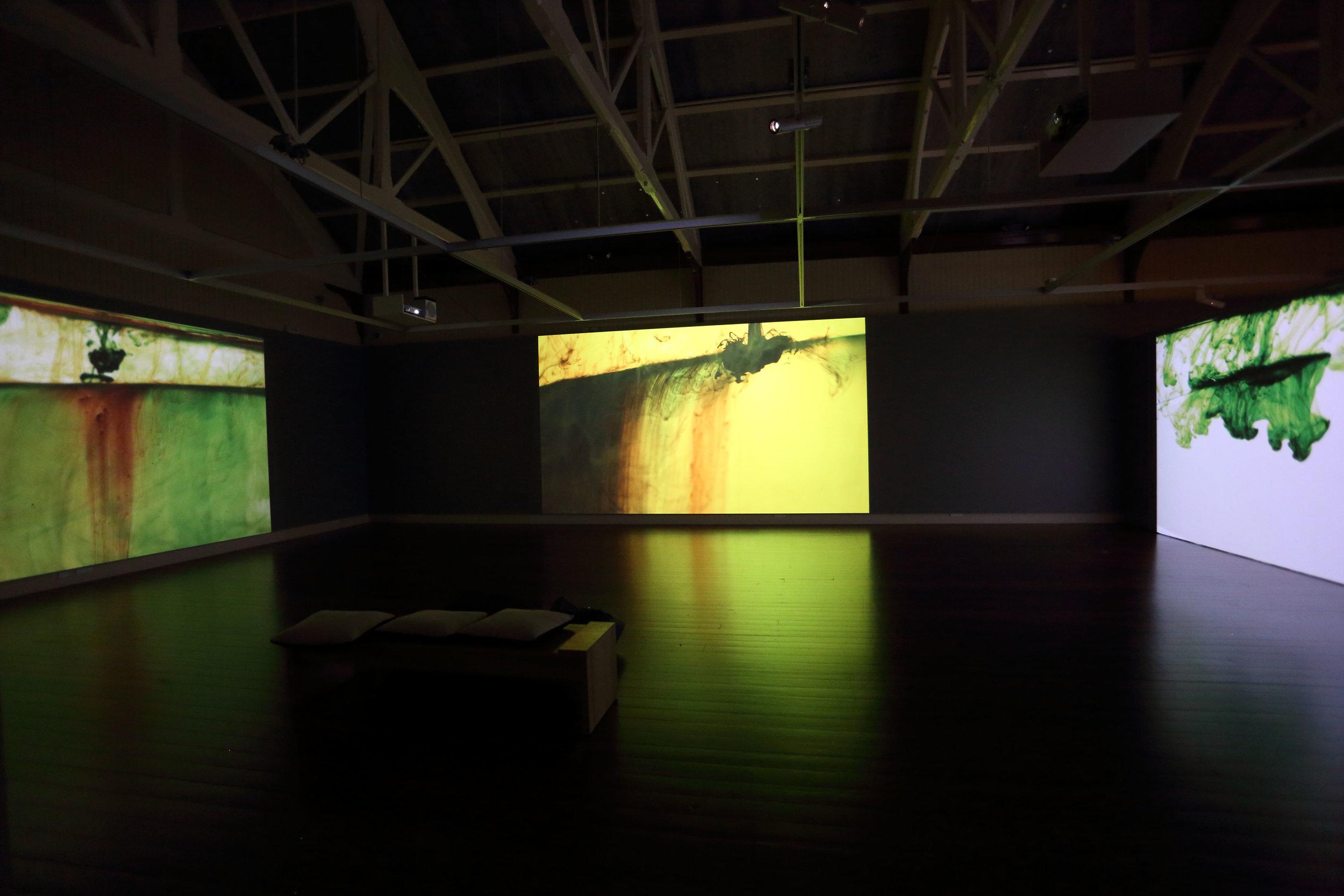 Installation view: Vincent Ward,  Palimpsest / Landscapes