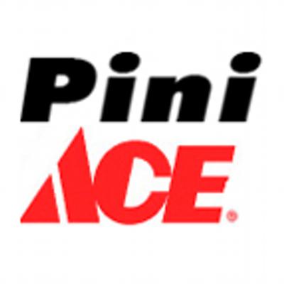 pini_twitter_logo_new_400x400.png