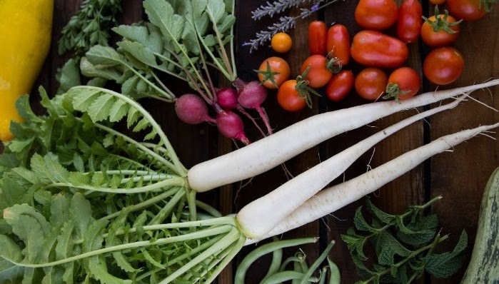 Produce varies month to month , including  root veggies (carrots, beets, radishes), salad greens, leafy greens, garlic, onions, leeks, fresh and dried herbs and a flower bouquet.