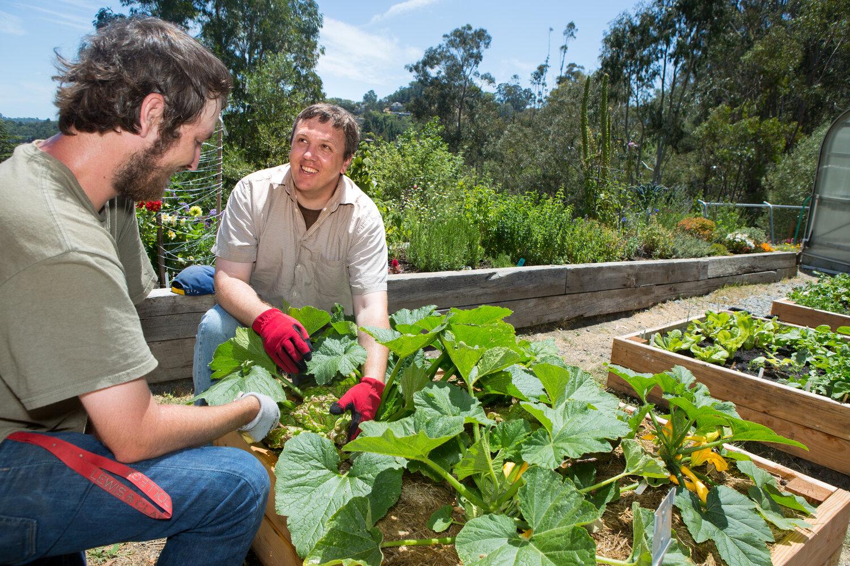 Gem Garden Program Integrated