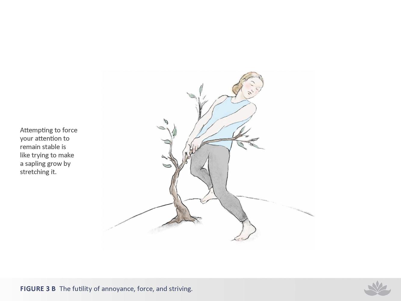nwd-illustration-33-2.jpg