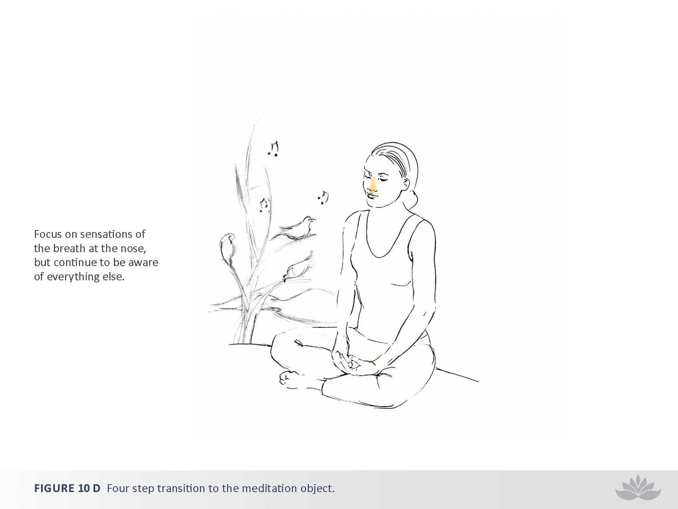 nwd-illustration-09-6.jpg