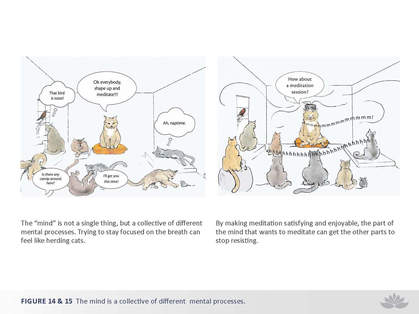 nwd-illustration-19-2.jpg