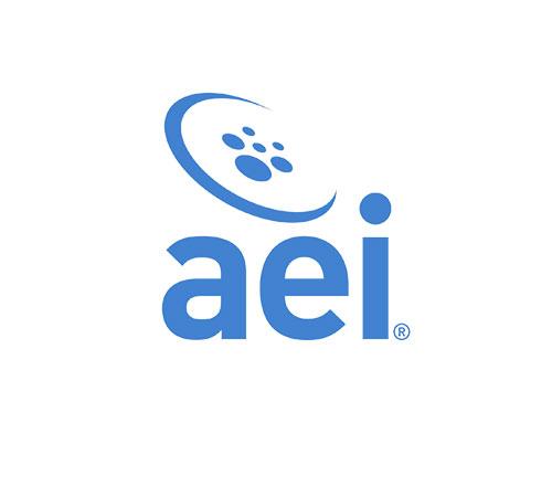 AEI-Logo-Stack.jpg