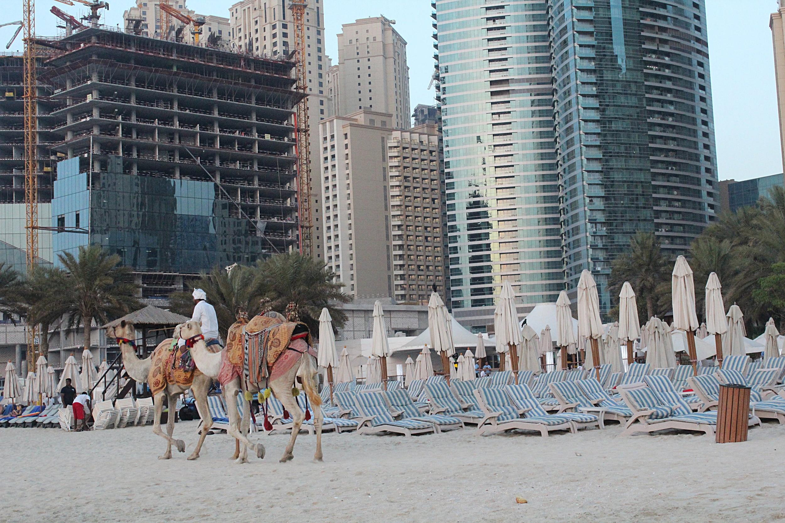 Copy of DUBAI