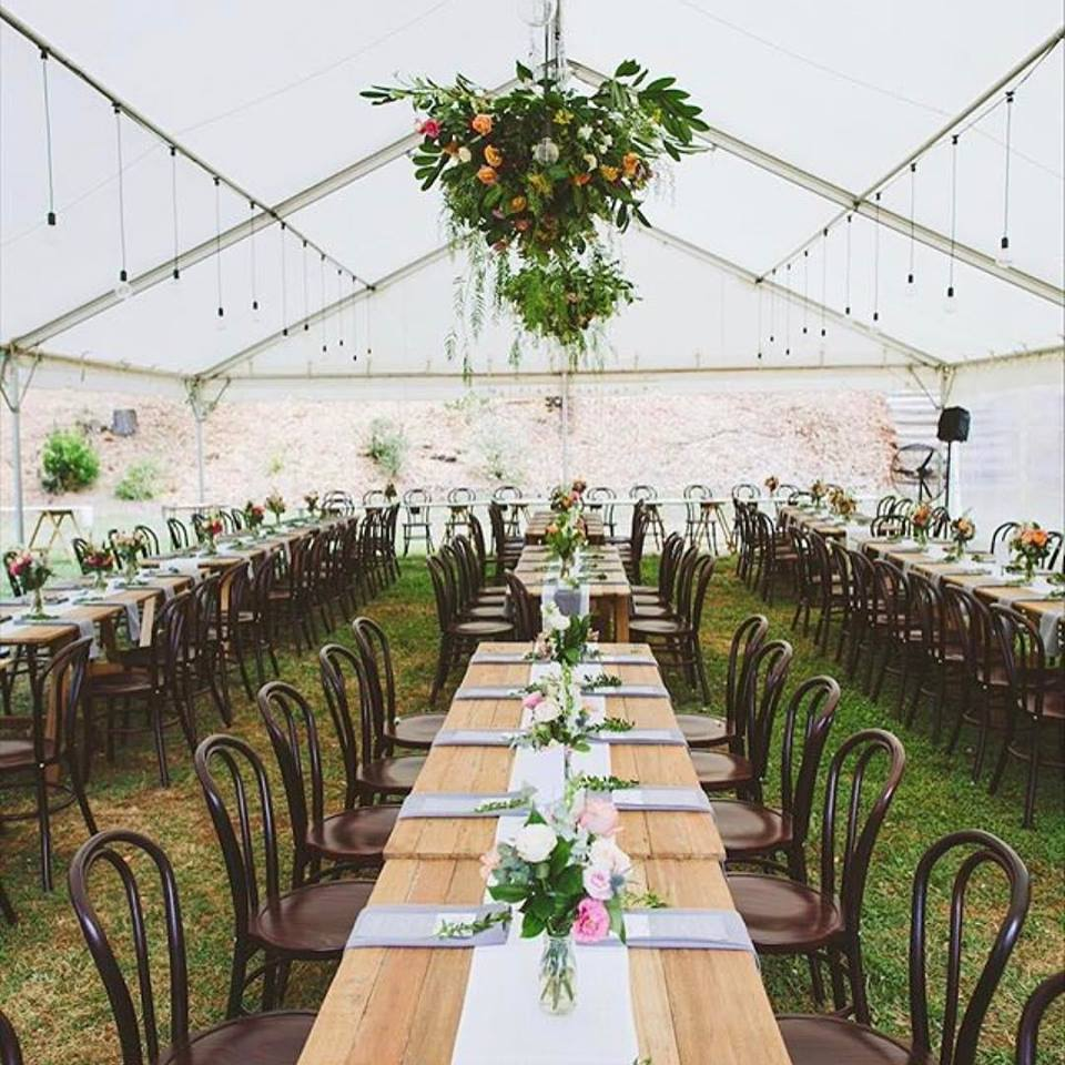 balfour wedding 1.jpg