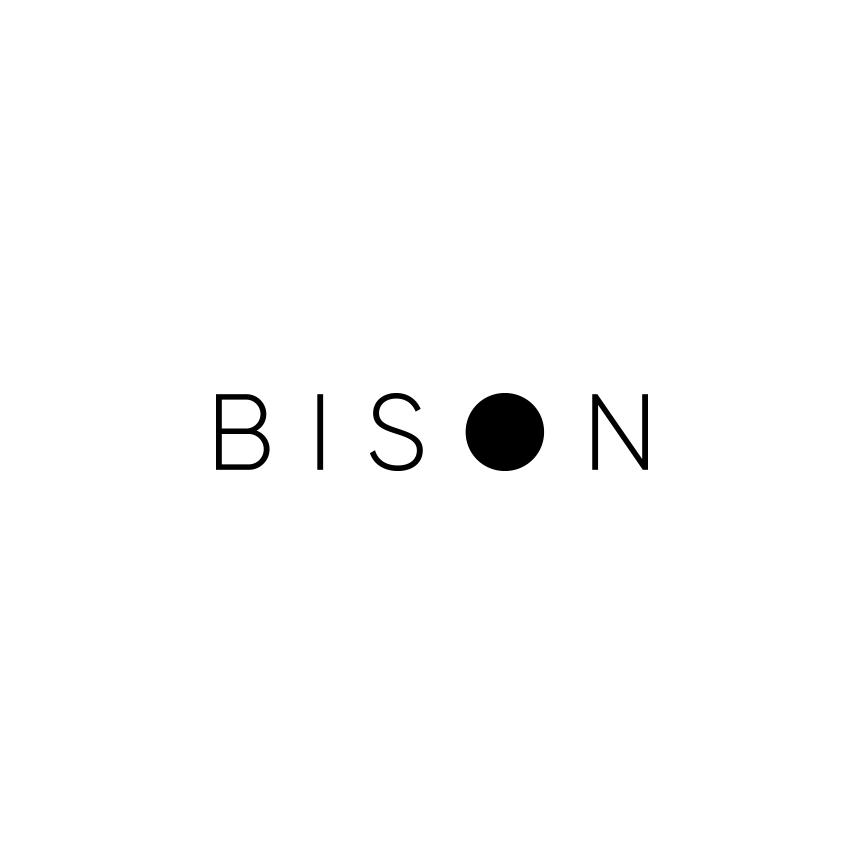 bison logo.jpg