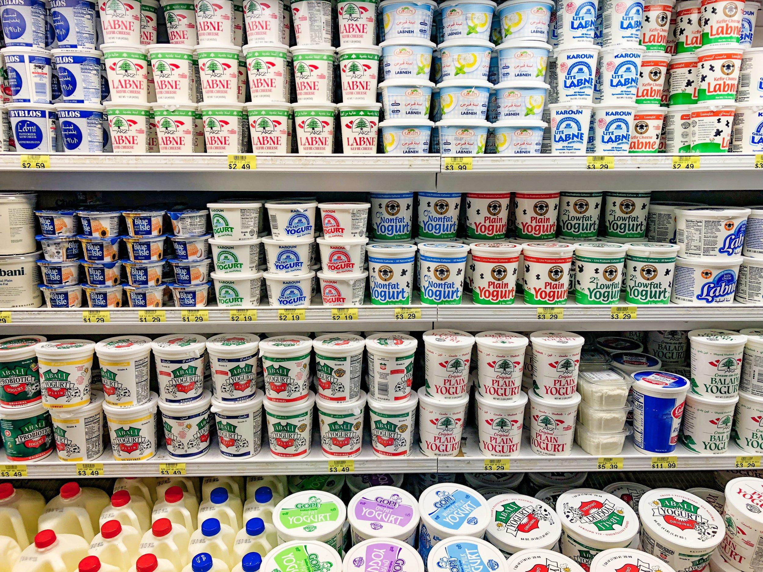 Yogurt and More Yogurt