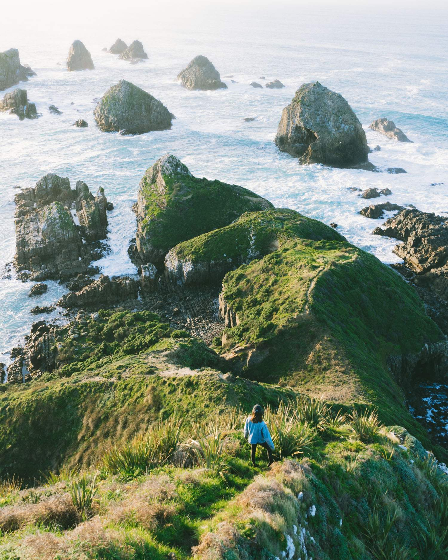 The Catlins. Nugget Point Lighthouse, South Island, New Zealand
