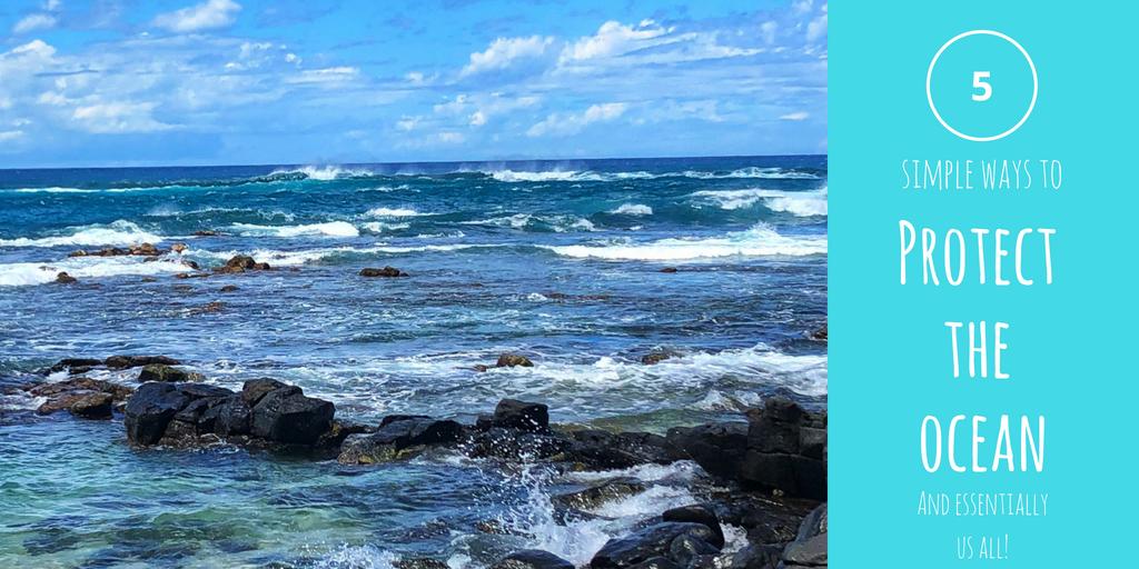 protect the ocean.jpg