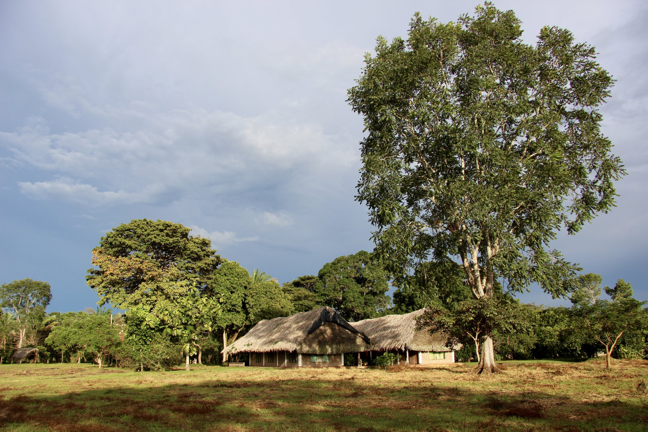 Here's the property we stayed at. The only neighbors they have are the howler monkeys!