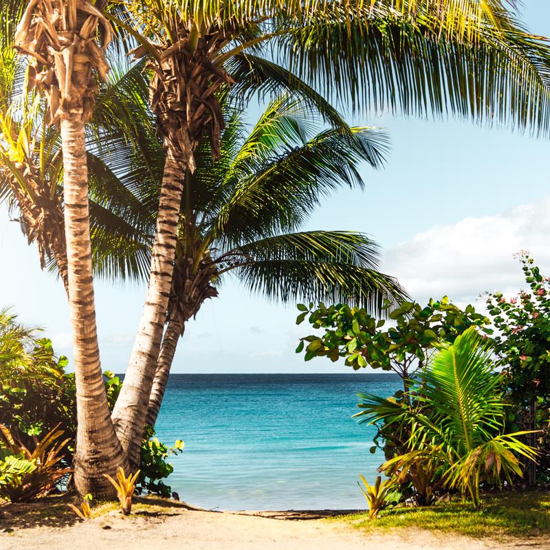 Volcano & Beach Costa Rica -