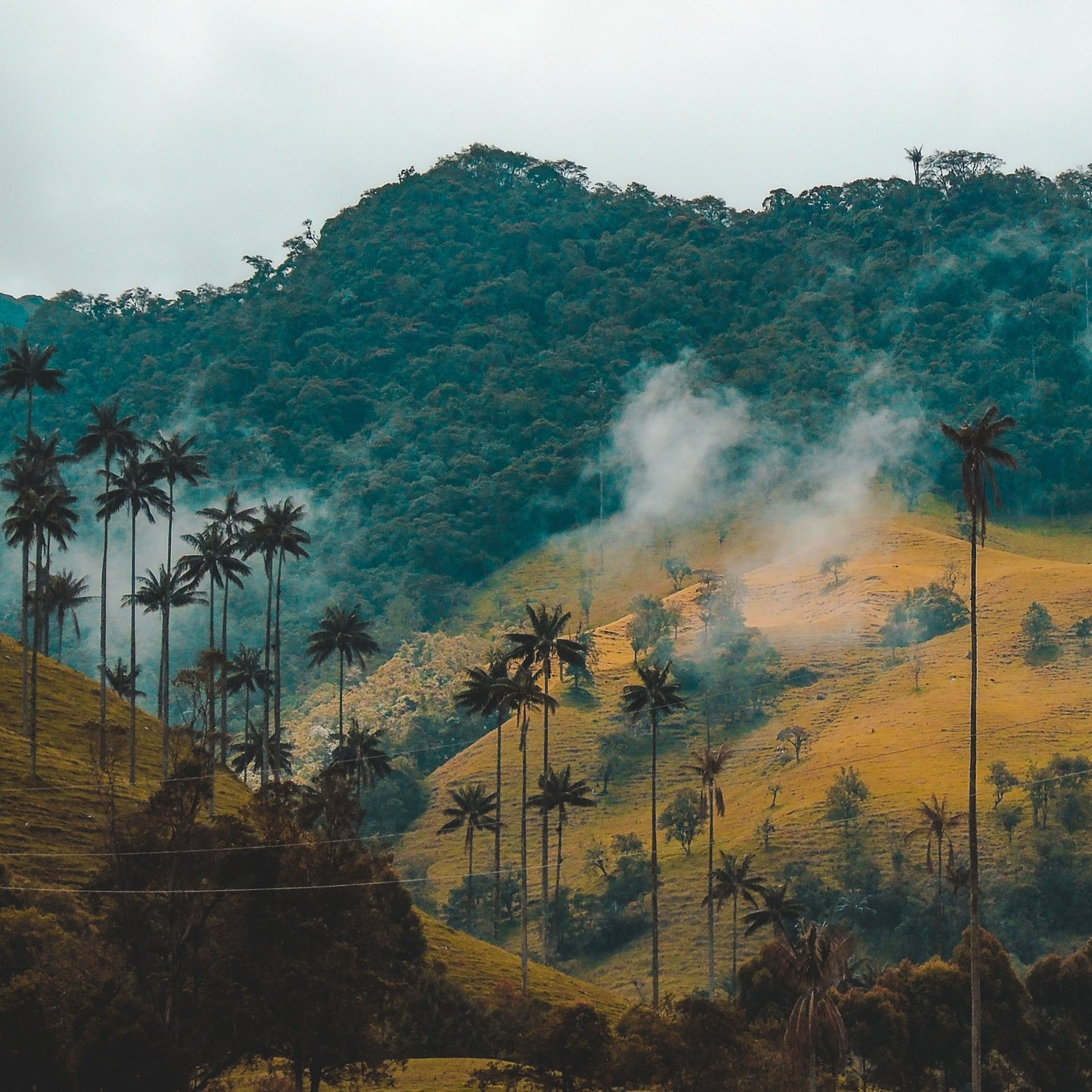 Gorgeous Guatemala -