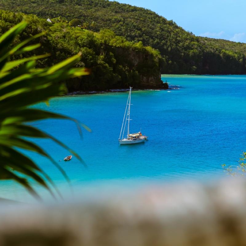 St. Lucia Splendor -
