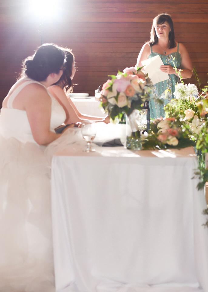 Christina Servin Photographs Bainbridge Kitsap Gay Wedding Summer Outdoors-29.jpg
