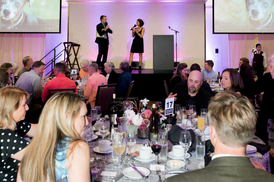 Kitsap Humane Society Animal Krackers 2018 Gala Christina Servin Photographs-159.jpg