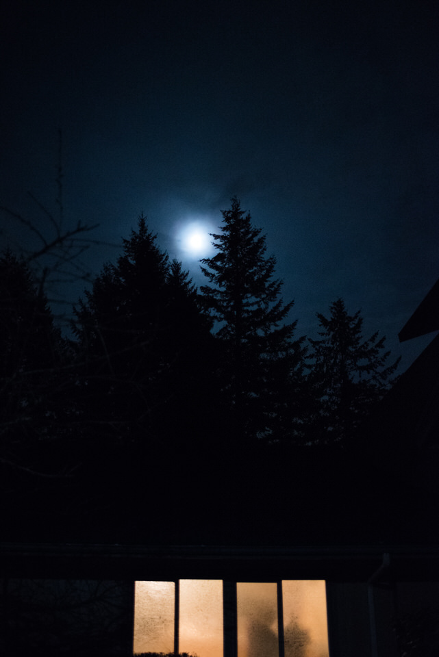 full moon wedding sky Kitsap wedding Christina Servin Photographs.jpg