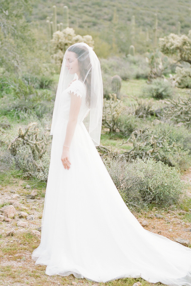 Usery Pass Bridal Portraits Arizona Desert Winter Tulle Gown Veil Christina Servin Photographs-4.jpg