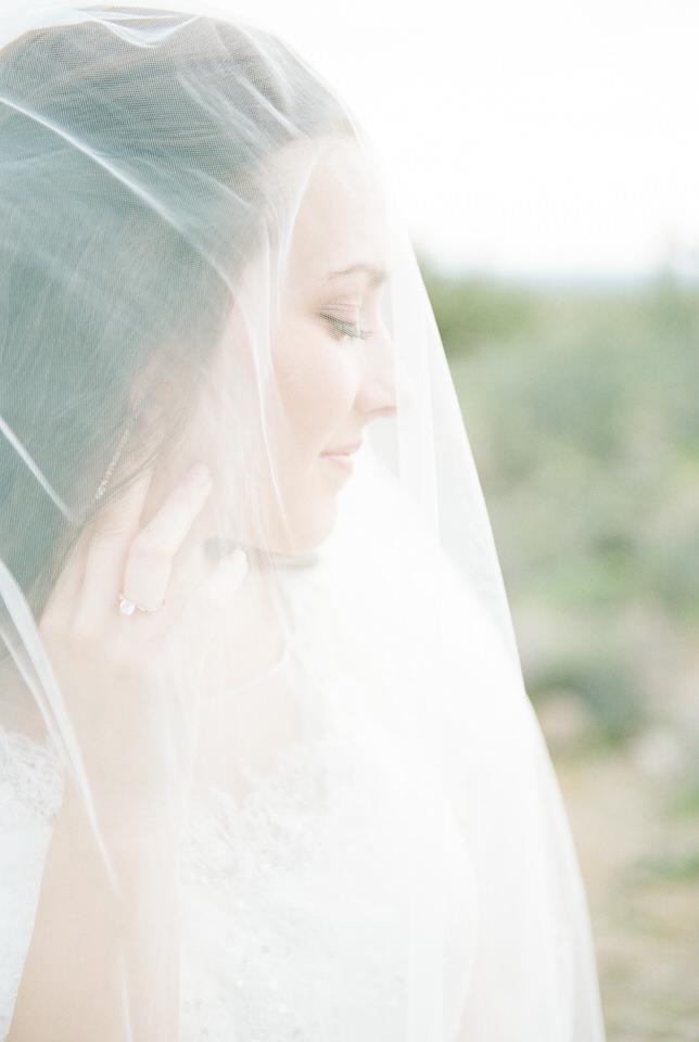 Usery Pass Bridal Portraits Arizona Desert Winter Tulle Gown Veil Christina Servin Photographs-7.jpg