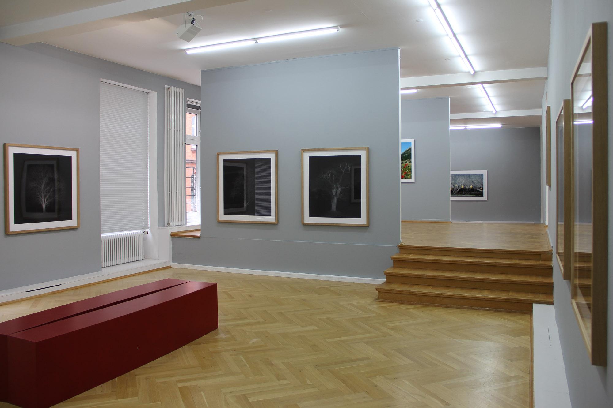 Bernhard Knauss Gallery-2.jpg