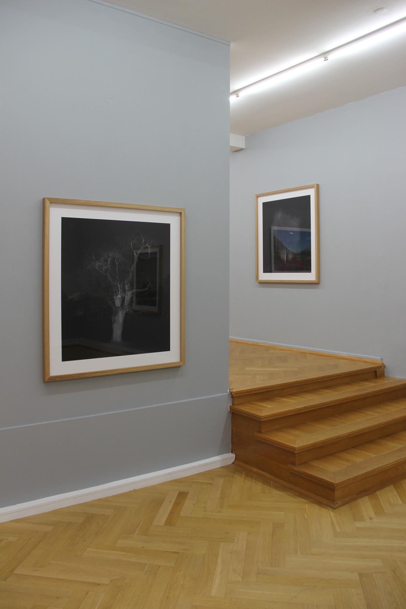 Bernhard Knauss Gallery-3.jpg