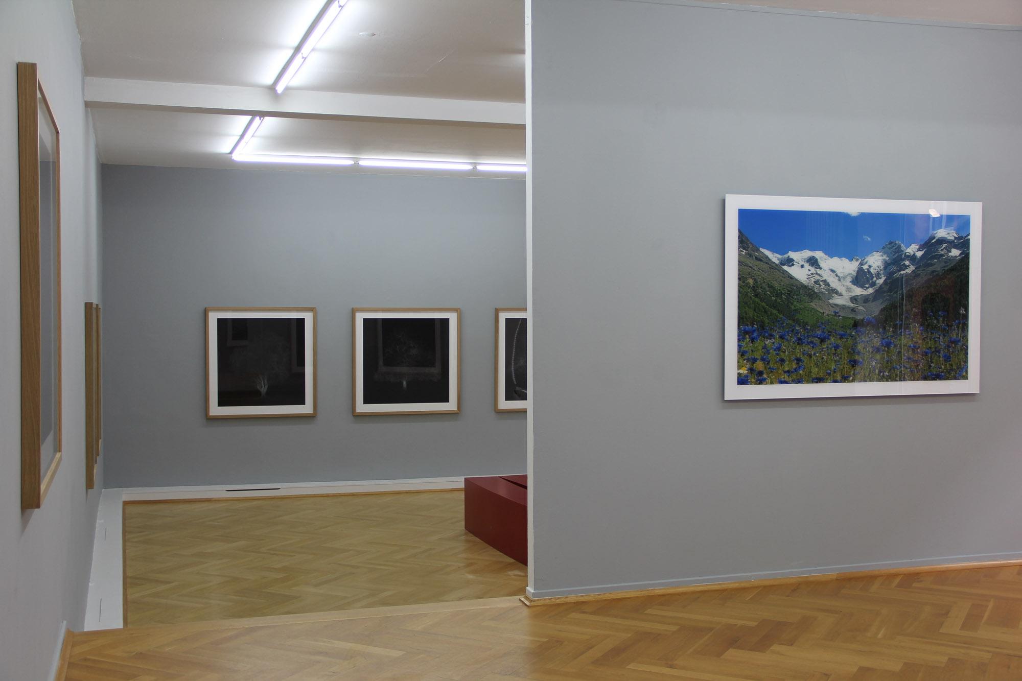 Bernhard Knauss Gallery-4.jpg