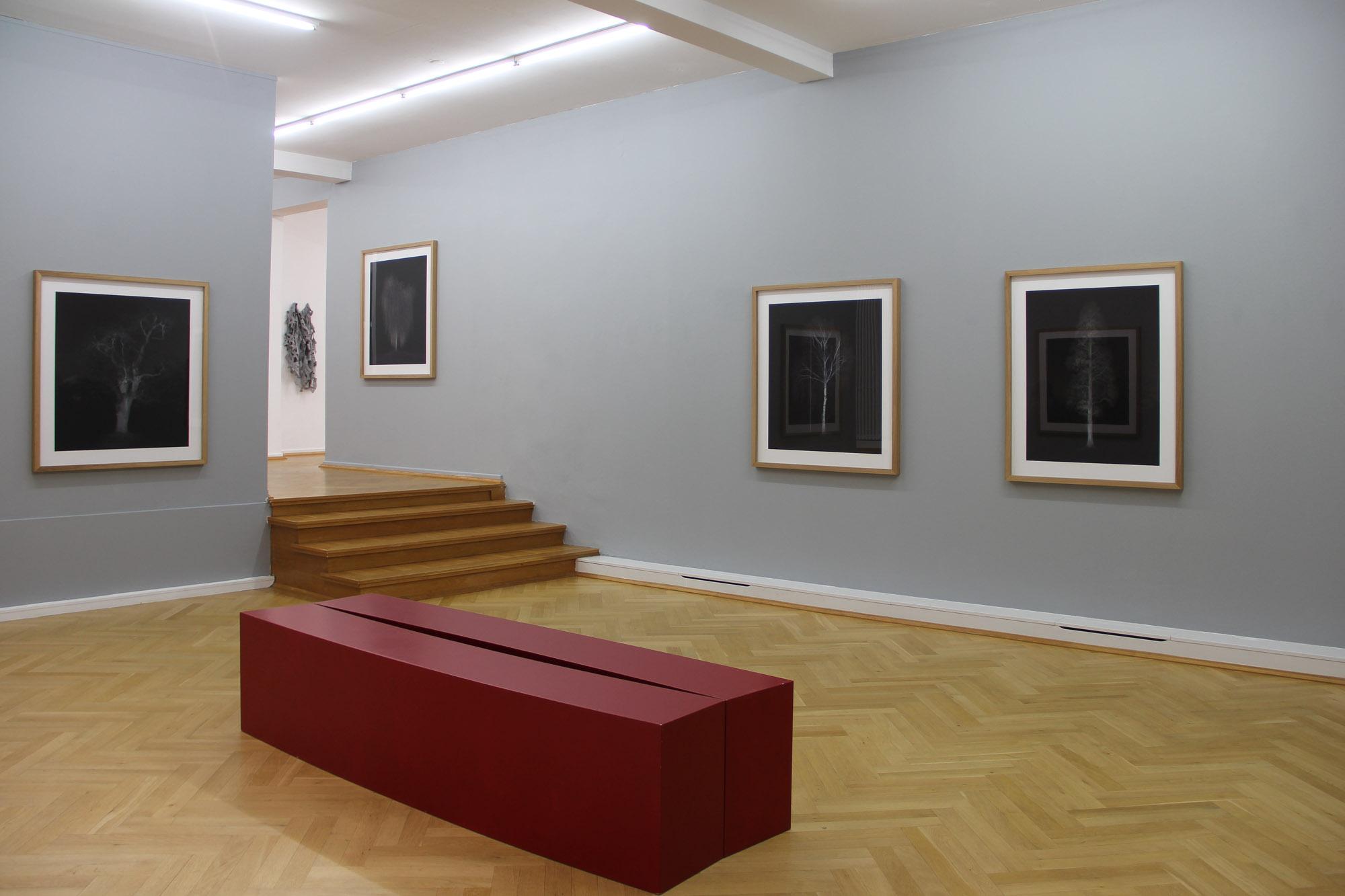 Bernhard Knauss Gallery.jpg
