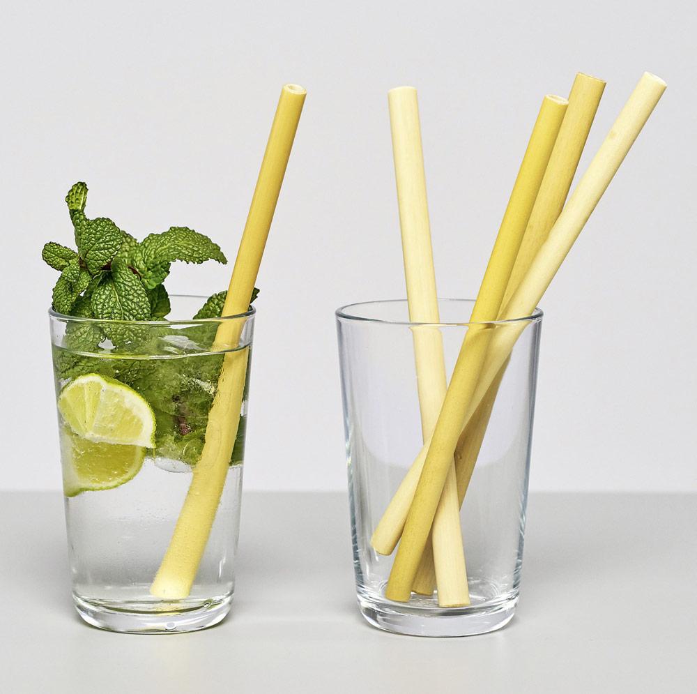 bambus_halmeimglas.jpg