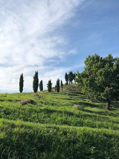 Trails - Oasi di Galbusera Bianca - Doing Italy.jpg