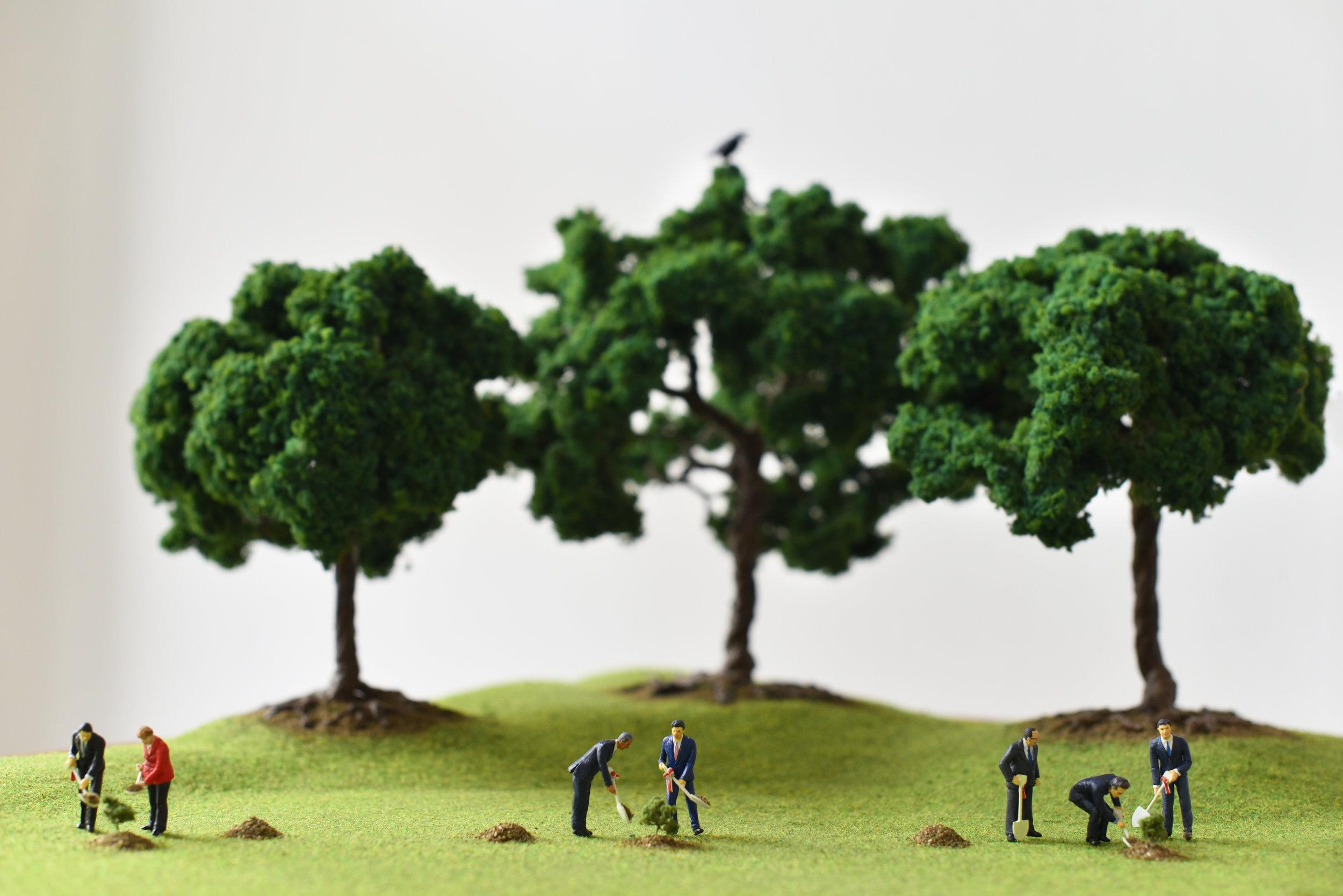 The Pathfinders, the Hand and the Trees - Olivia Hernaïz (2).jpg