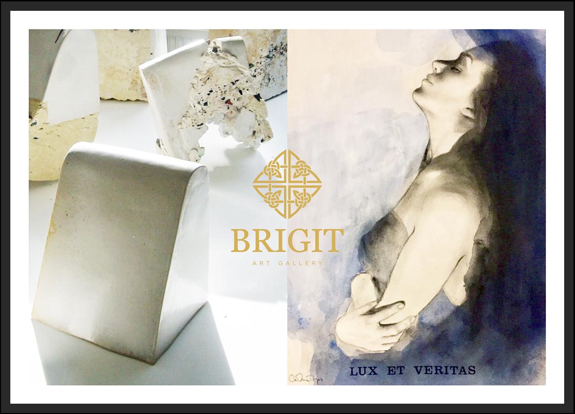 "Exposition à Brigit Art Gallery ""Luis Gonzalvez & Carolina Toyos"""