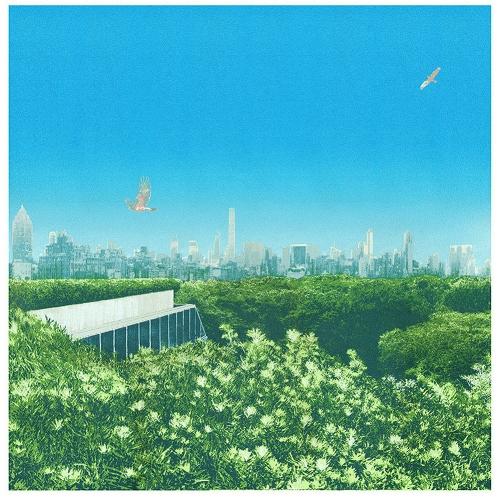 Central Park Treetops by Emma Reynolds