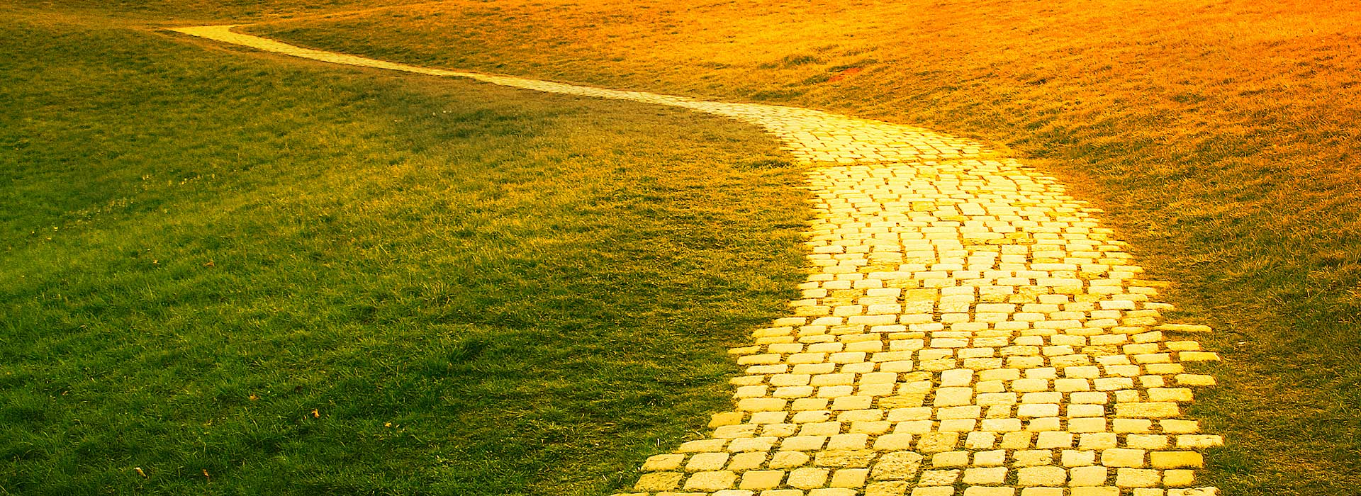 The yellow brick road of leadership