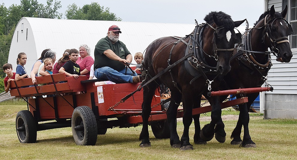 Tim and Cindy Bango of Bango Valley Percherons in Richville taking those attending on a scenic wagon ride. (photo by Jessyca Cardinell)