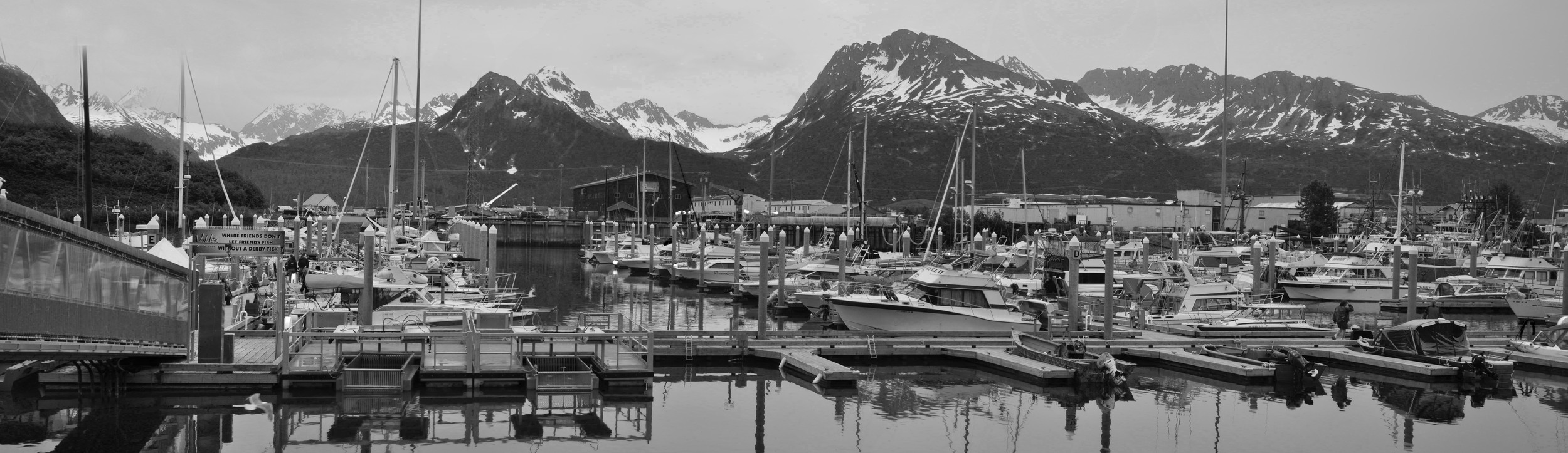 Valdez, Alaska - Try a whale watching tour
