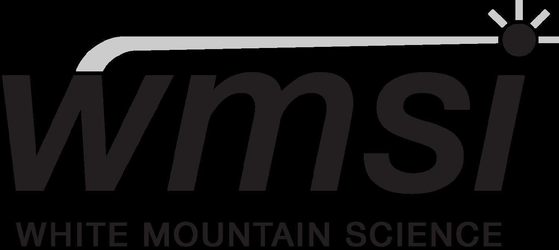wmsi logo.png