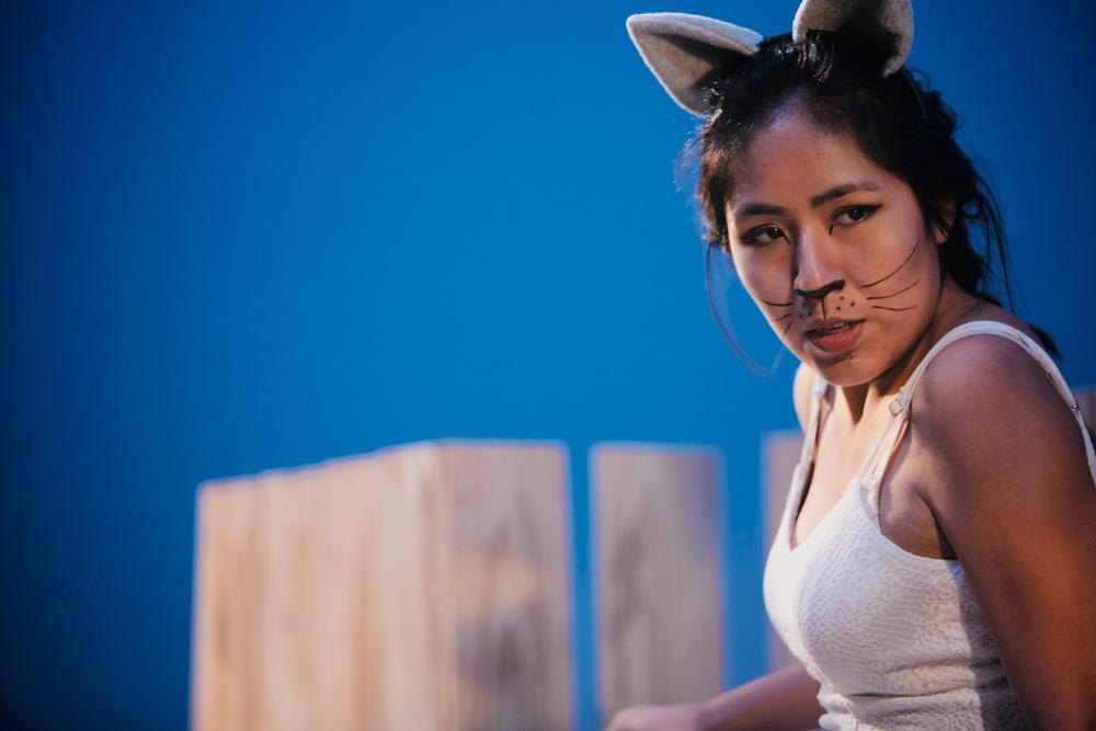 Cat,  References to Salvador Dali Make Me Hot , courtesy of Emily McCartney / TZOM Films