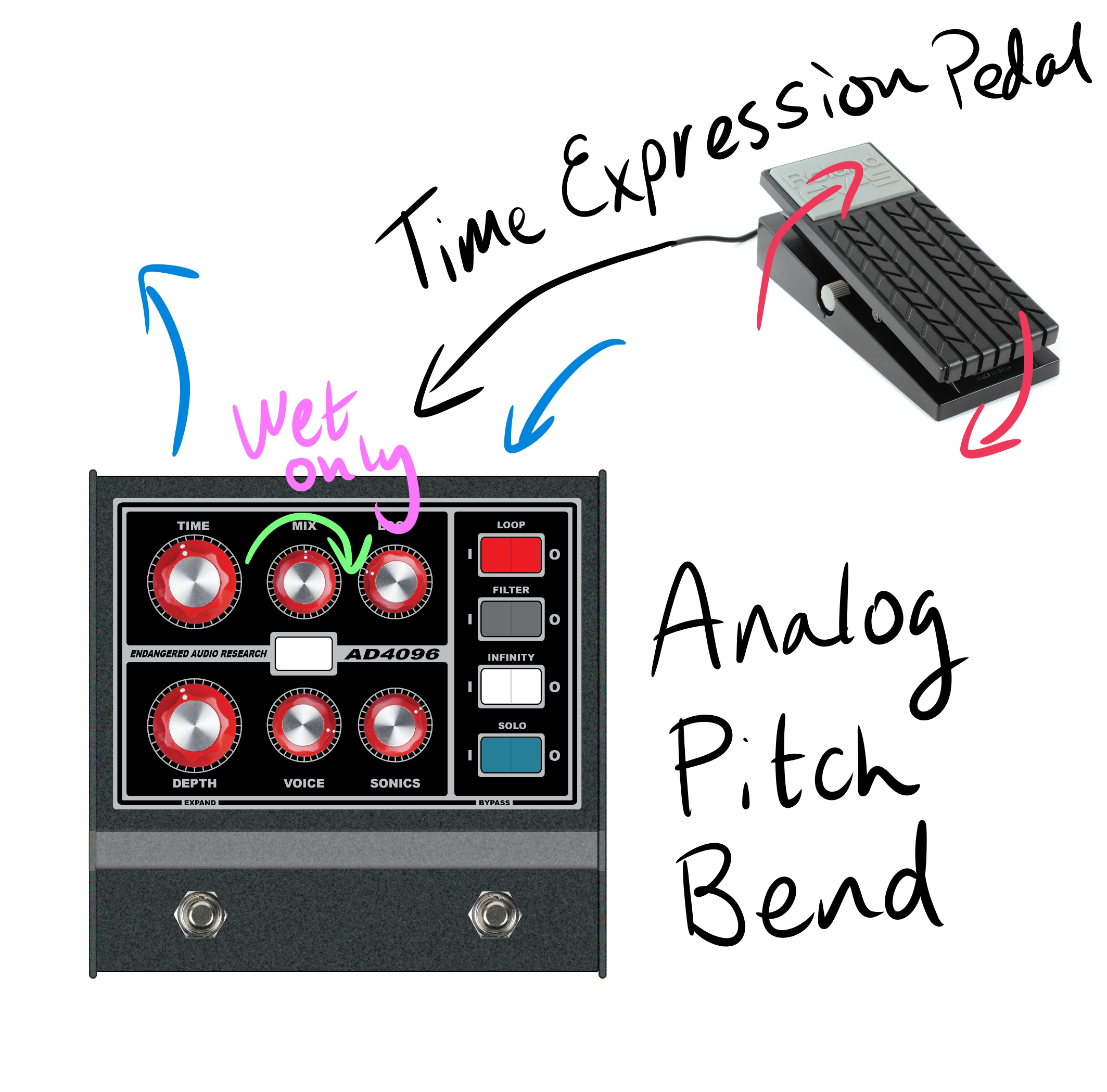 Time Expression.jpg