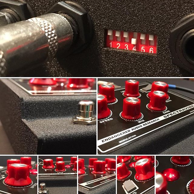 #spectravibe #studio #studiolife #producerlife #producer #guitarpedals #pedalboard #pedalboardporn #pedalboardoftheday #stompboxes #tremolo #wah #autowah #tremolopedal #analog #analogpedal #knowyourtone #pedalsandeffects #effectspedals #pedalboardarchive #gristleizer #thegristleizer #shotoniphone