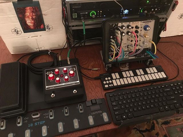 Making more demos tomorrow! These ones will show the clocking and modulation inputs with synthesizers & @Audulus. #spectravibe #studio #studiolife #producerlife #producer #guitarpedals #pedalboard #pedalboardporn #pedalboardoftheday #stompboxes #tremolo #wah #autowah #tremolopedal #analog #analogpedal #knowyourtone #pedalsandeffects #effectspedals #pedalboardarchive #gristleizer #thegristleizer #shotoniphone