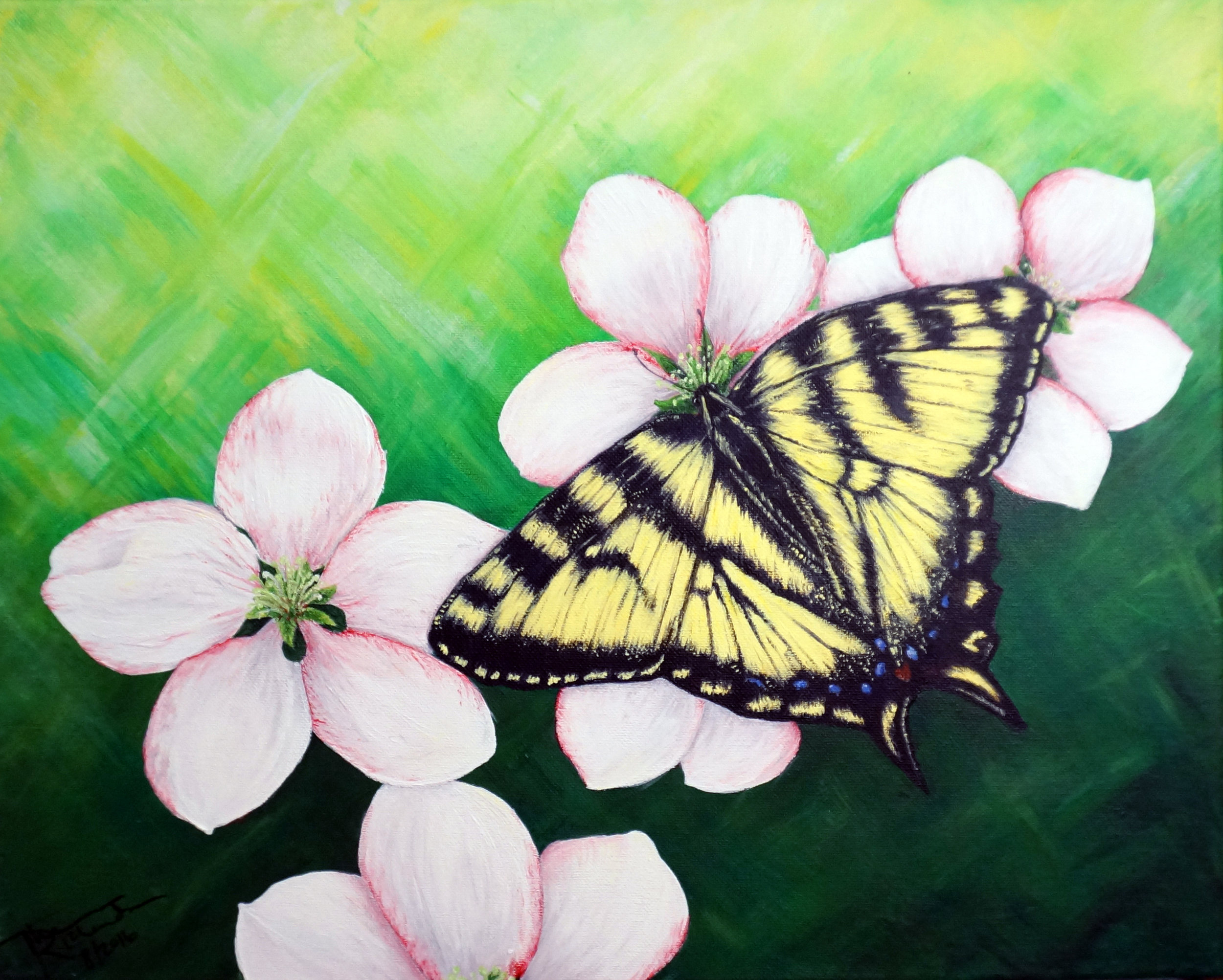 Butterfly and Blossoms , 2016, acrylic on canvas, 16 x 20 inches